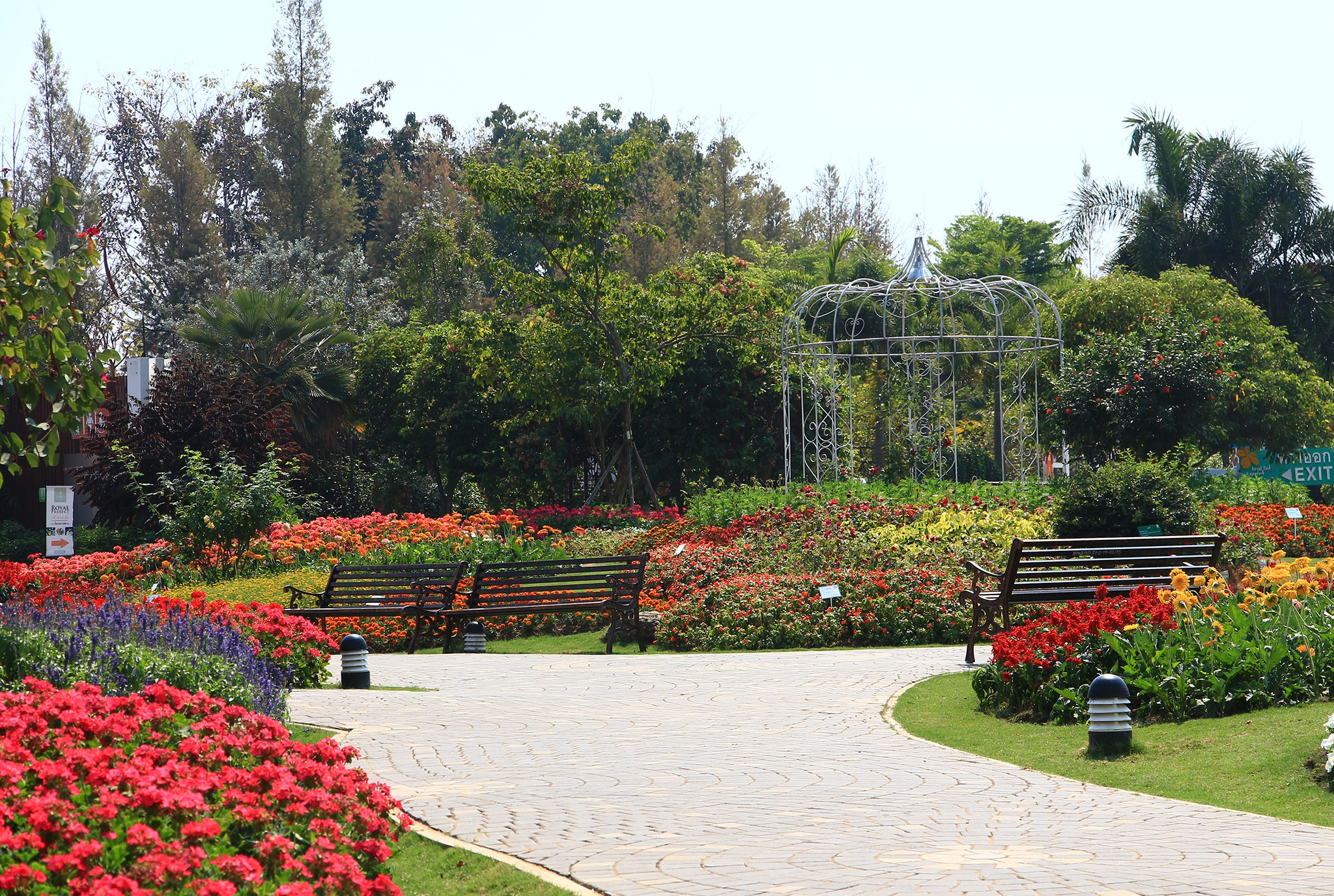 Anläggning av park och gräsytor